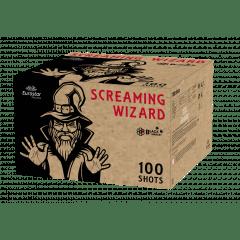 Screaming Wizard  (VWWW10017)